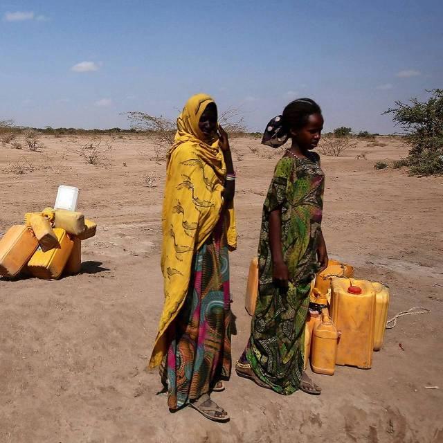 Door de droogte is een groot deel van het vee in Ethiopië gestorven. De bevolking is sterk afhankelijk van vee, waardoor nu grote voedseltekorten zijn ontstaan.  Foto: reuters